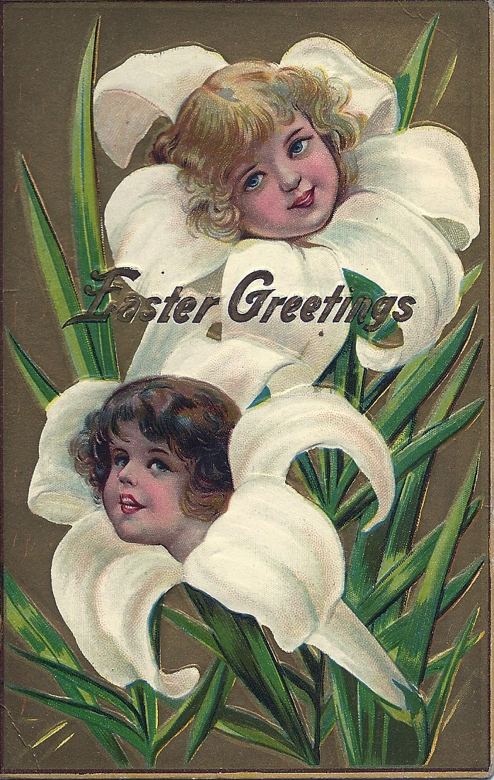 antique Easter lily postcard