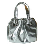 silver metalic purse